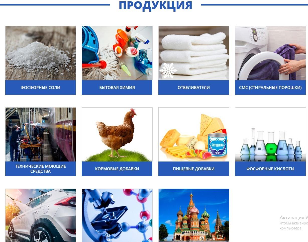 Пример аудита интернет-магазина: td-rassvet.ru производитель бытовой химии.